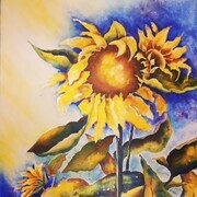 Sunflowers at Wagon Shed., acrylic
