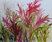 Bromeliad at Heenans, oil on canvas