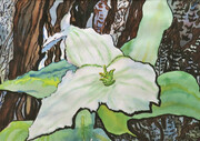 Trillium against the Tree